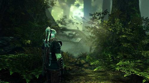The Witcher 2: AoK